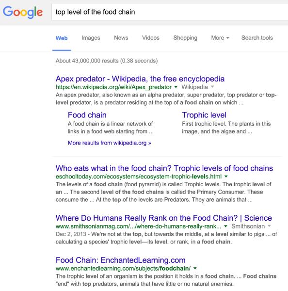 Query di ricerca di Google