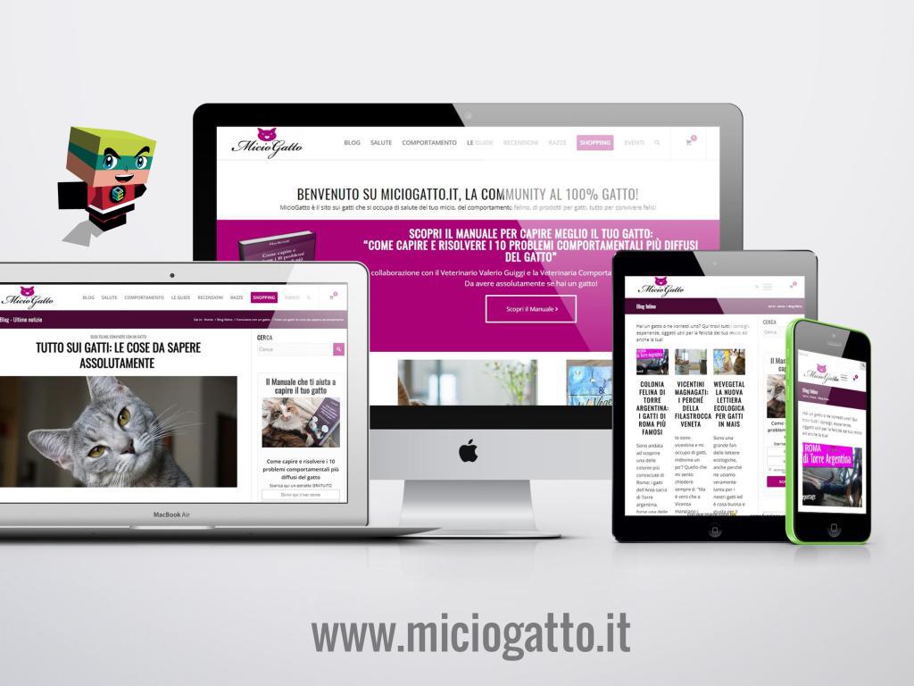 Il blog di Miciogatto e gli strumenti di SEOZoom