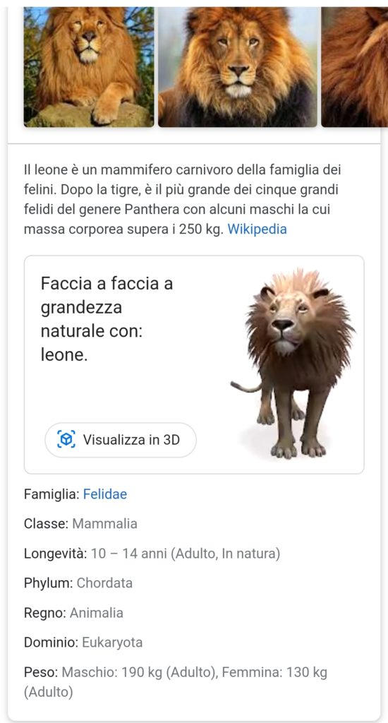 Screenshot della SERP italiana senza AMP Stories