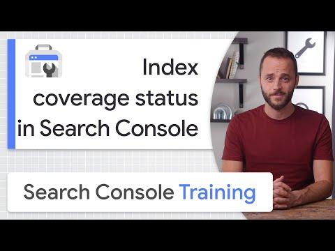 Guida all'uso del Rapporto sullo stato della copertura dell'Indice di Google