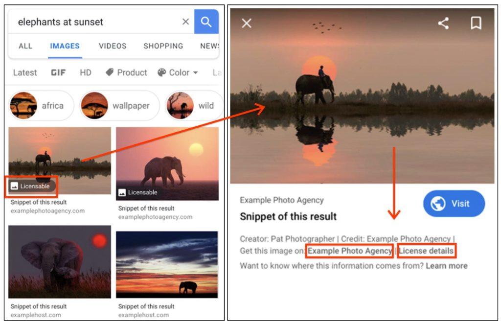 Esempio dei metadata per la licenza delle immagini