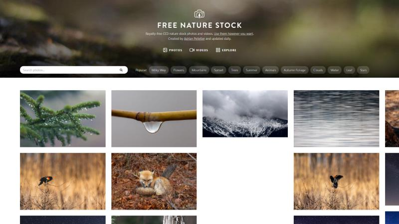 Screen di Free Nature Stock