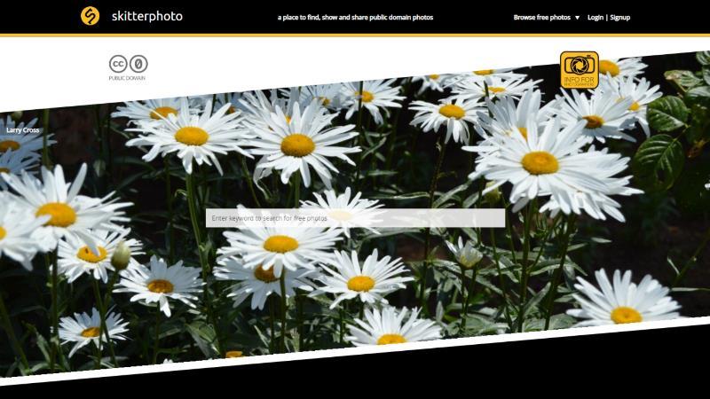 Screen di Skitterphoto