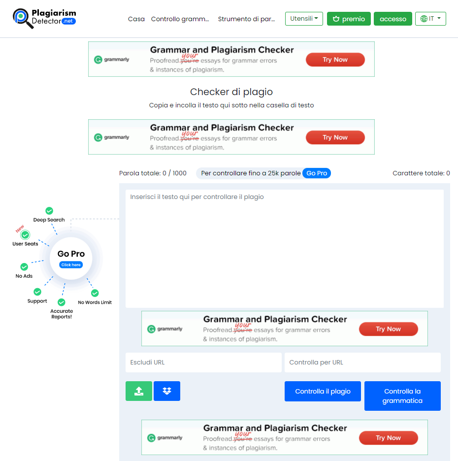 Schermata del tool Plagiarism Detector